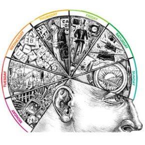 brain training silueta cerebro cómo entrenarlo