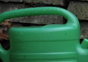 watering can save water save money