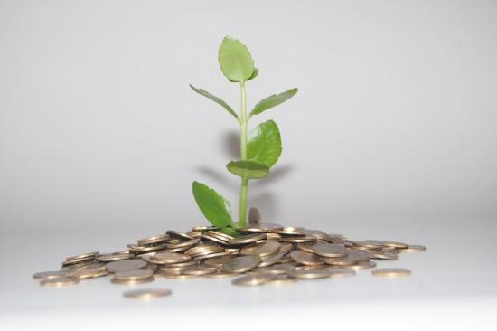 Ahorrar dinero, ahorrar el medio ambiente