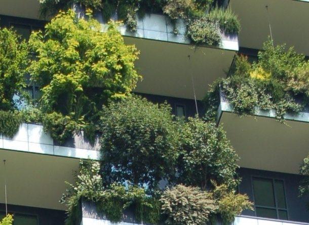 cultivo vertical en ciudades