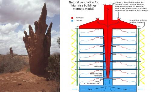 Biomimetic design termite mounds