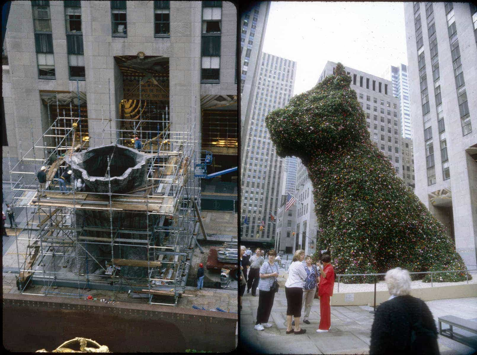 We will tell you everything about Puppy, the flower statue guarding