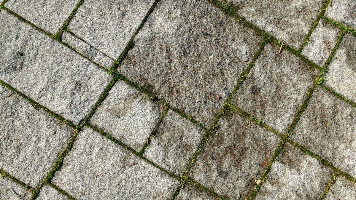 Imagen de una calzada romana de piedra y césped