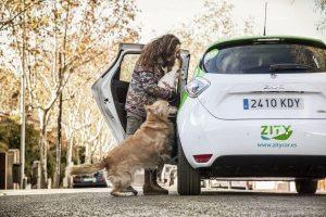 vehículos Zity en Madrid