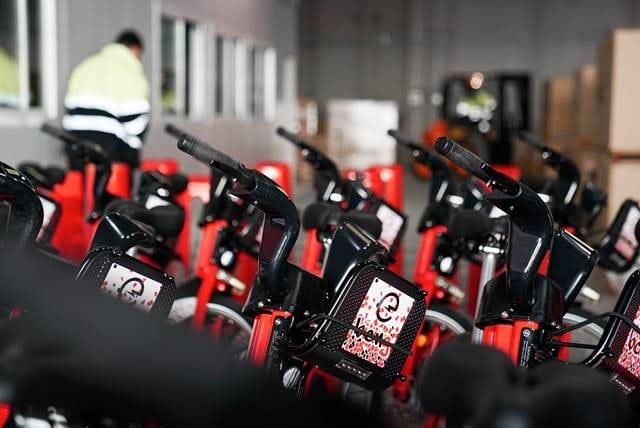 bikesharing and mobility