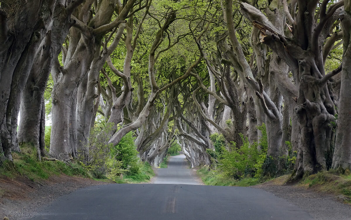 Bregagh Road in Northern Ireland