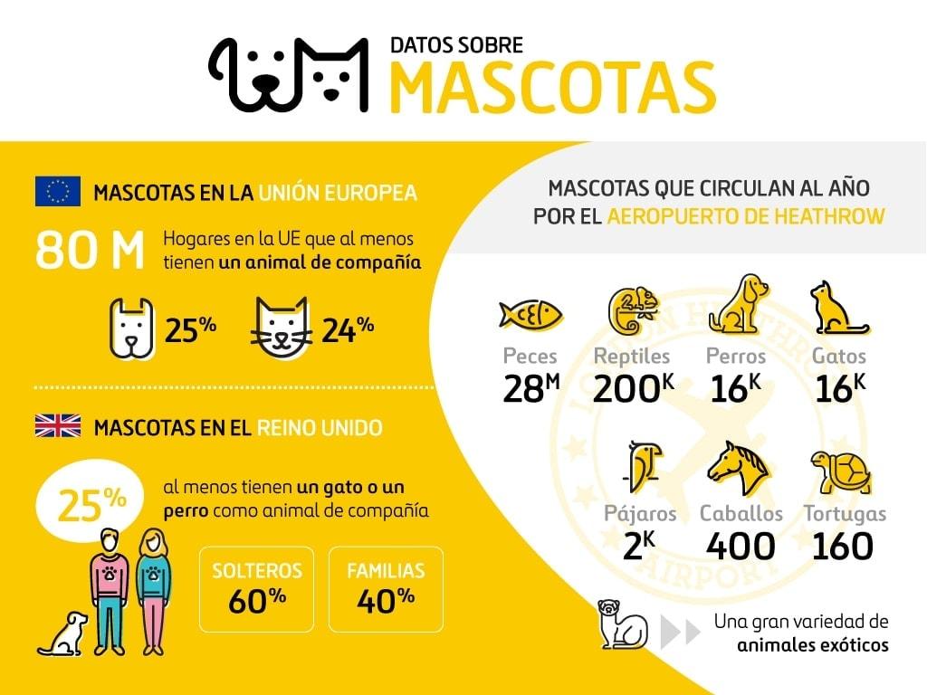Infografía Mascotas